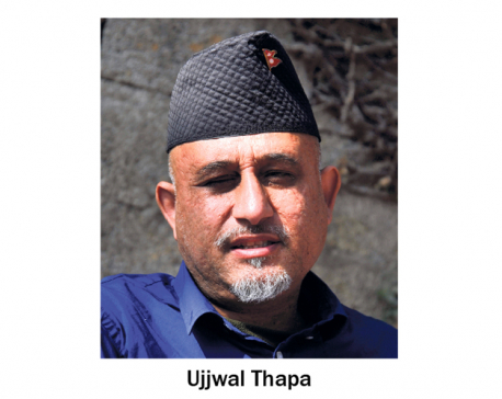 Bibeksheel Chairman Thapa not to contest for party chief again