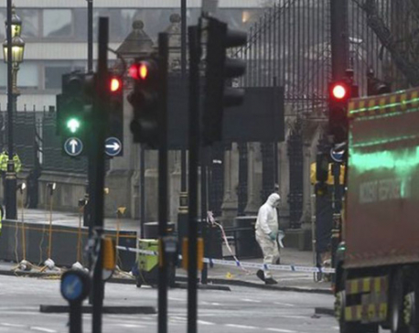 UK parliament attack: Police arrest seven