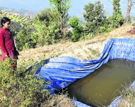 Water shortage further punishes quake victims