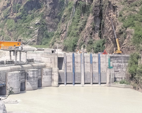 Upper Tamakoshi Project likely to be delayed