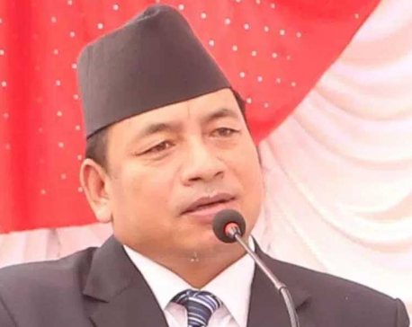 VP Pun urges govt. to help cold wave affected people