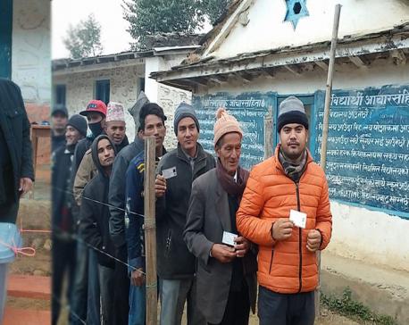 30 per cent votes cast till 11 AM in Doti