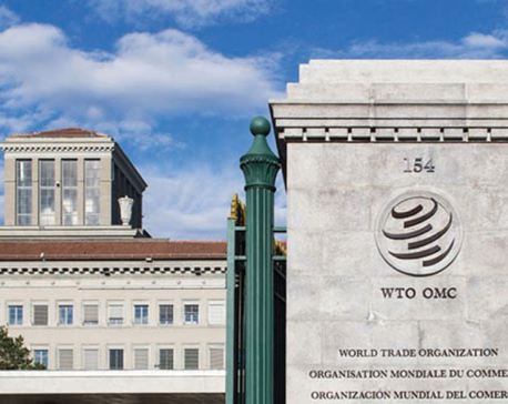 Relevance of WTO reform