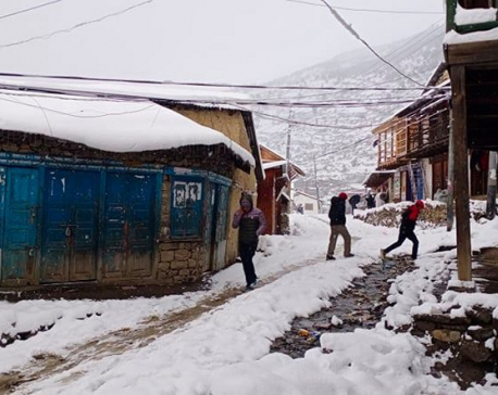 Snowfall in Humla welcomed by farmers