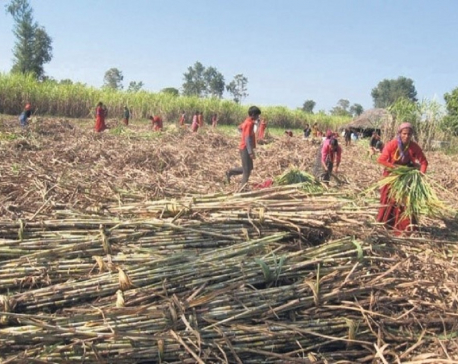 Help the farmers or brace for massive protests