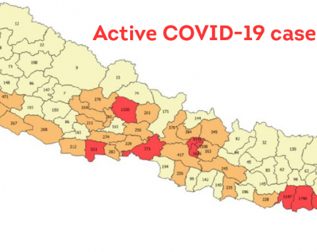 These nine districts still have 500 plus active COVID-19 cases each, Karnali Province least-affected