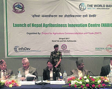 Govt forms agribusiness innovation center