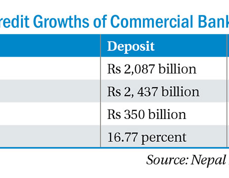 Annual credit jumps 20.46% while deposit grows 17%