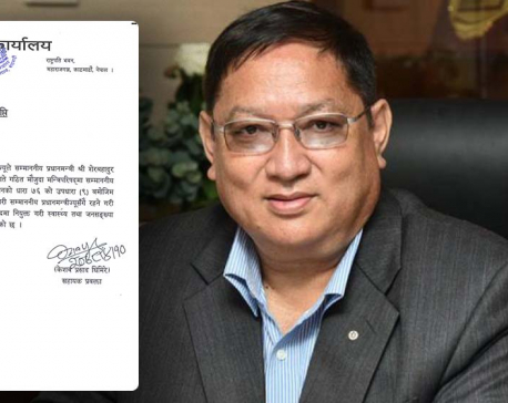 Lawmaker Shrestha appointed as Minister of State for Health