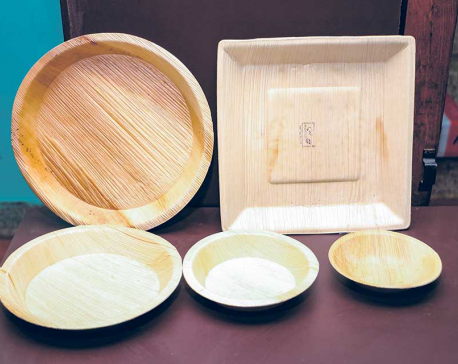Cups and Plates out of Areca catechu