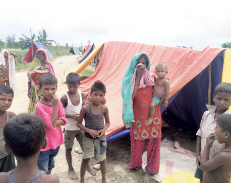 With embankments destroyed, Tarai more prone to floods