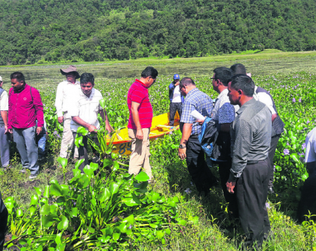 Fishermen start removing hyacinth from Begnas Lake