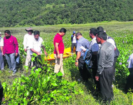 Fishermen start removing hyacinth from Begnas Lake