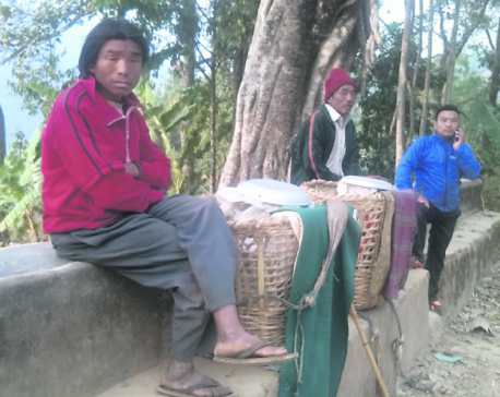 Baglung exporting milk worth Rs 25m