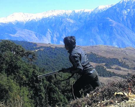 Kalikot locals worried over growing wildlife poaching