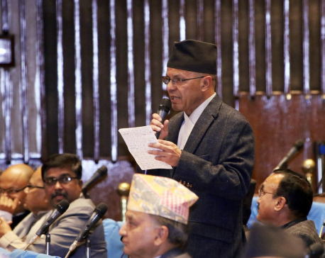PM should carry out activities taking Parliament into confidence: Leader Rijal