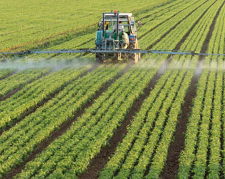 Commercializing agriculture