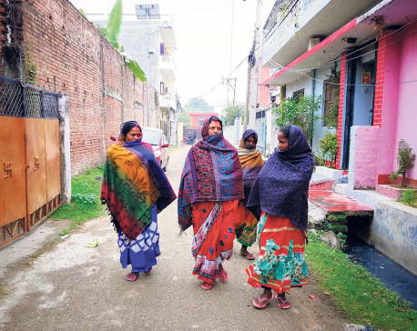 Tarai districts turn dark in daytime, hinting arrival of coldwave