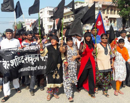 Constitution Day marked as 'Black Day' in Birgunj