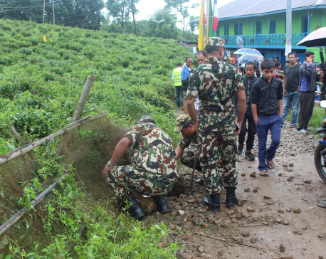 Bomb goes off in Ilam, no human casualties reported