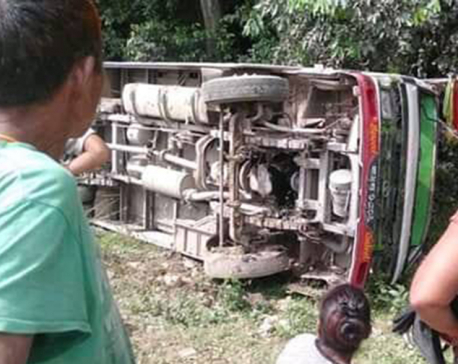 Seven injured in Kailali bus accident