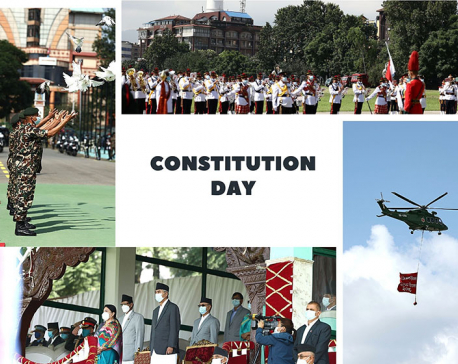 In Pics: 7th Constitution Day celebrations