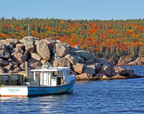 Canadian island offers land, job to anyone willing to move there