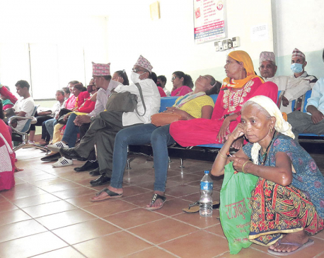 Farmers most numerous among cancer patients