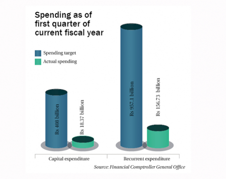 Only 4.41% capital spent in Q1 of FY2019/20
