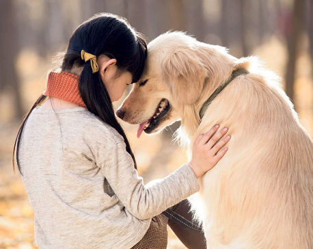 Caring for Your Pet: Five Ways to Show You Love Animals