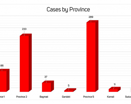 With 72 new cases, Nepal's COVID-19 tally spikes to 675
