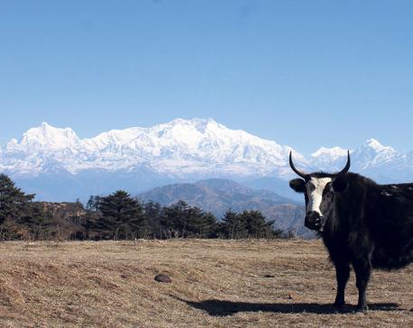 Reaching Sandakpur through Nepal by road