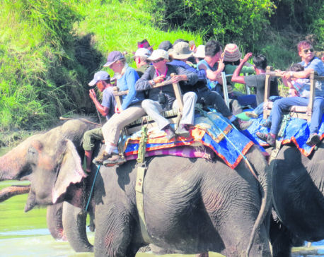 Chitwan hotels' road to recovery literally blocked by landslides, construction