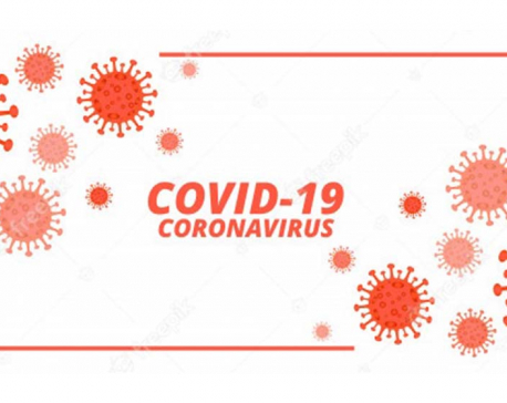 44 died of COVID-19 on Wednesday