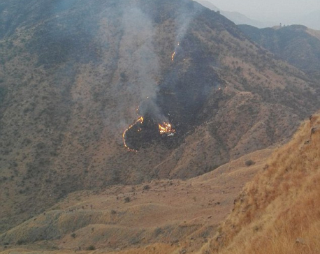 About 40 people feared dead in Pakistan plane crash