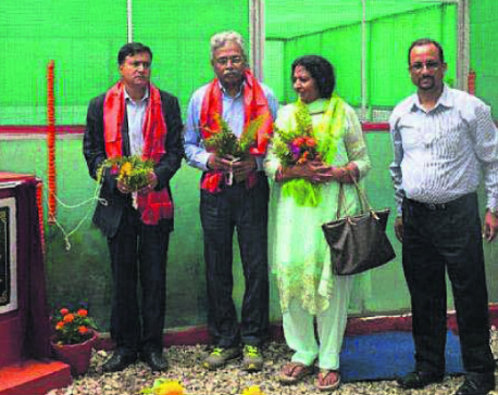 Dabur Nepal hands over greenhouse to PADT