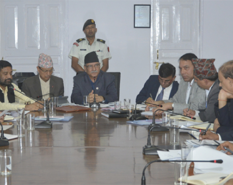 PM Dahal directs NRA CEO for result-oriented performance