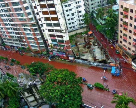 Rivers of blood flow on Dhaka streets after Eid sacrifices (with video)