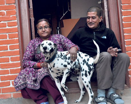 He died saving his dog in earthquake, it's now the joy of his family