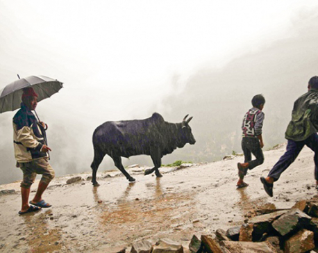 Rain likely in western Nepal for few more days