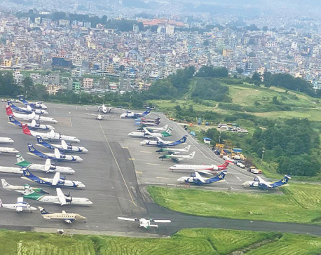 Domestic flight frequency back to normal