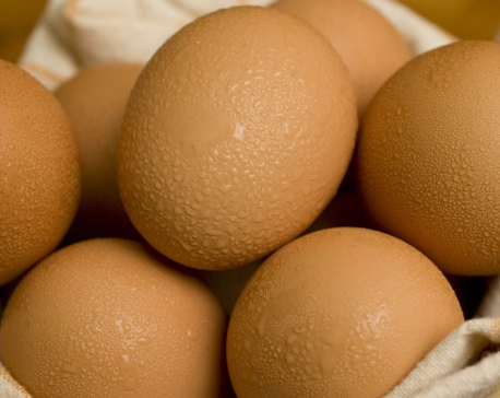 Nepal is self-reliant in egg, milk powder, butter and meat: Govt