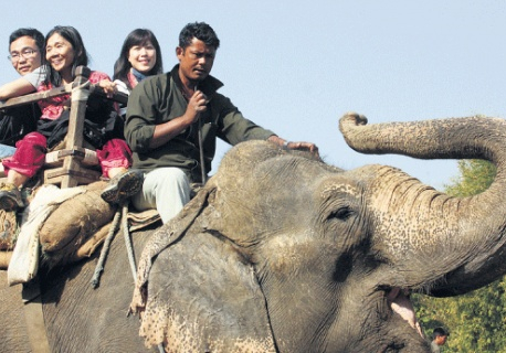 Four community forests given permission for elephant safari