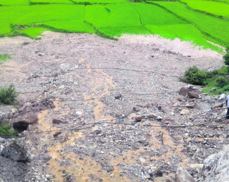 Landslides caused by road expansion damage paddy