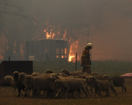 2 firefighters die, 3 hurt as wildfires ravage Australia
