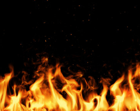 35 houses gutted in fire in Jumla