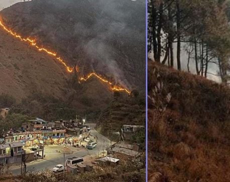 Forest fire goes out of control in Syangja district