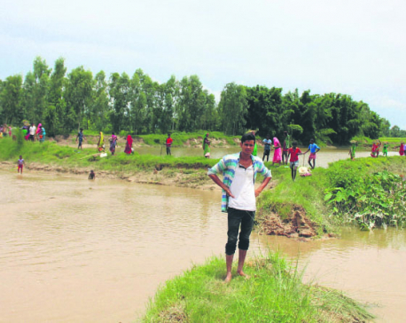 Floods wash away paddy fields, fish ponds in Dhanusha