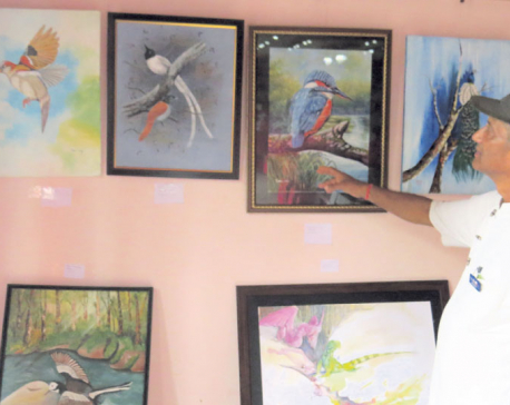 Natural Art Exhibition in Chitwan