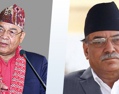 NCP Vice-chairman Gautam meets Dahal, says he is still in favor of party unity
